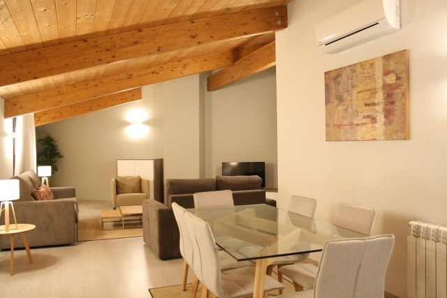 Duplex 1-7 Pers. Apartment (2 Rooms + 1 sofabed + 1 terrace)